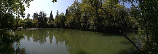 Curia, Portugália: Panorâmica da lagoa