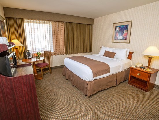The Inn at Longwood Medical: Guest room