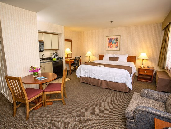 The Inn at Longwood Medical: Suite