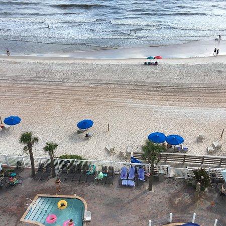 The Cove on Ormond Beach: photo1.jpg