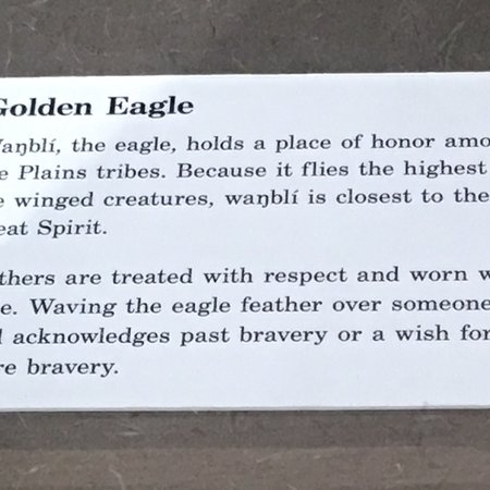 Akta Lakota Museum: photo7.jpg