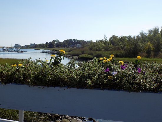 Scituate, MA: Flowers that start the Parkway