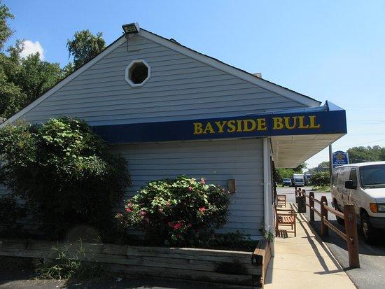 Bayside Bull照片