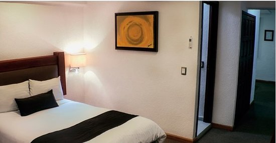 Hotel del Campestre: Guest room