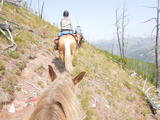 Lincoln, MT: Trail on Bugle Mountain