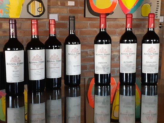 Bodega Achaval Ferrer: Amostra de vinhos degustados