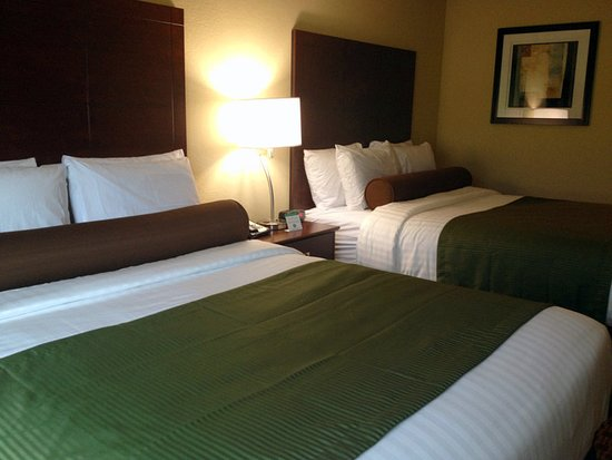Crookston, MN : Guest room
