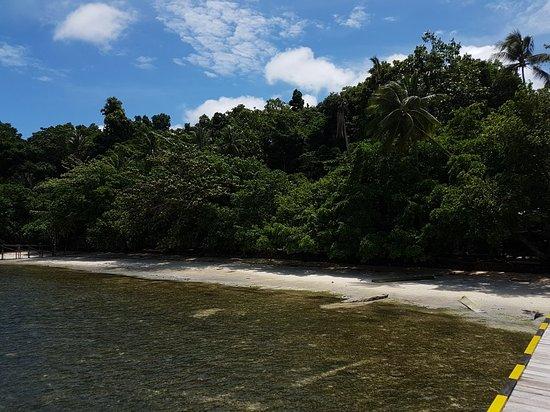 Raja Ampat Dive Resort: 20180827_120456_large.jpg