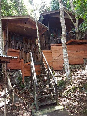 Raja Ampat Dive Resort: 20180826_115623_large.jpg