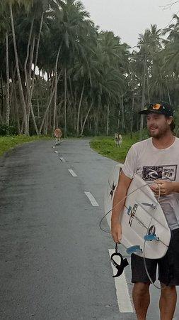 Ảnh về Baneng Island Resort