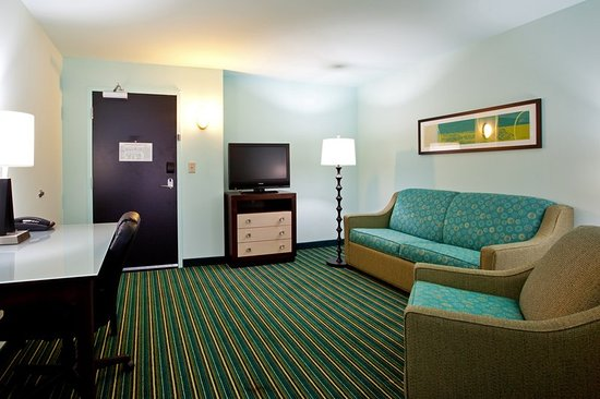 Holiday Inn Express Hotel & Suites Norfolk International Airport: Suite