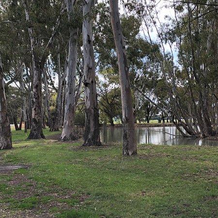 Rabl Park