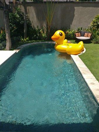 Villa Air Bali Boutique Resort & Spa: IMG_20180906_123743_large.jpg