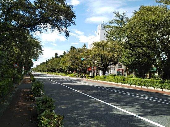 Daigakudori Street