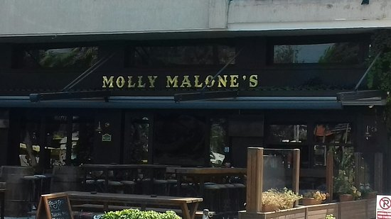 Molly Malones Bar