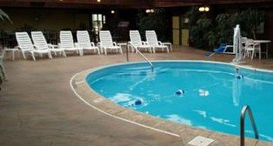 Wingfield Inn & Suites: Pool
