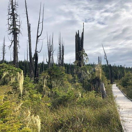 Alert Bay Ecological Park, Alert Bay, British Columbia: photo0.jpg