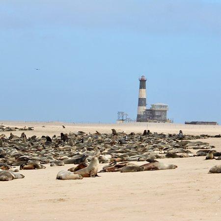 Charly's Desert Tours: photo4.jpg