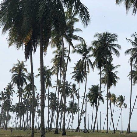 Pantai Penarik, Malaysia: photo0.jpg