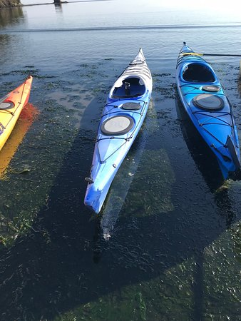 Adventures Through Kayaking Outfitters-billede
