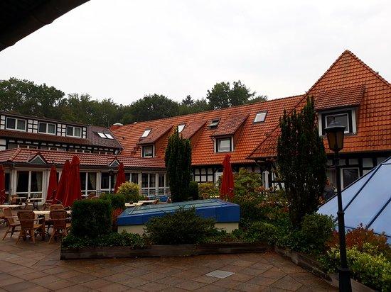 Dinklage, Germany: 20180906_154912_large.jpg