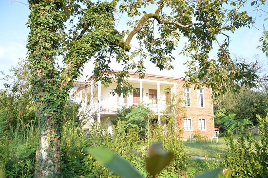 Martvili, Γεωργία: Surmava Palace