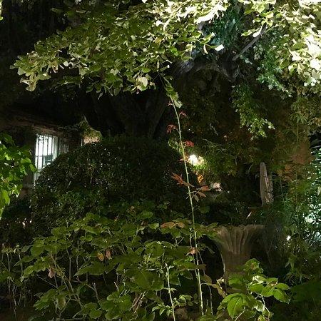 Restaurant le jardin du quai l 39 isle sur la sorgue restaurant reviews phone number photos - Le jardin du quai isle sur la sorgue ...