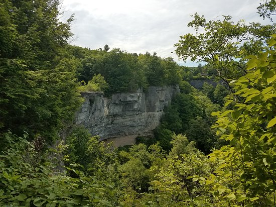 Voorheesville, NY: View from on top of the cliffs overlooking a dried up waterfall