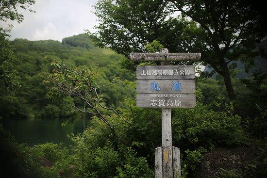 Yamanouchi-machi, Japan: 丸池:看板
