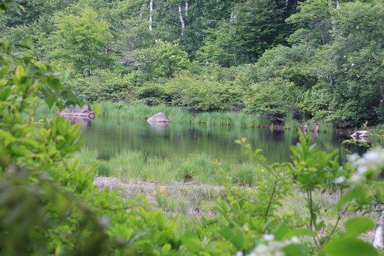 Yamanouchi-machi, Japan: 水無池