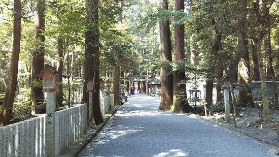 Tsubaki Ogamiyashiro Shrine