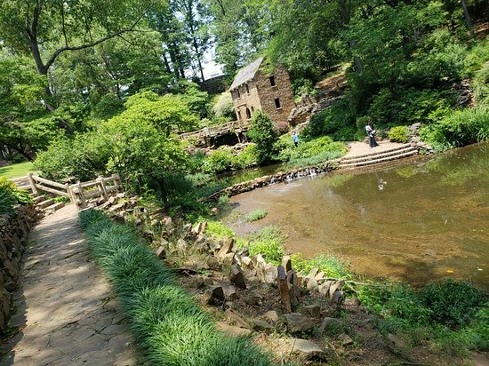 The Old Mill: 20180602_133145_large.jpg