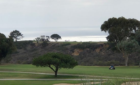 coastal terrace room picture of hilton la jolla torrey pines la rh tripadvisor ie