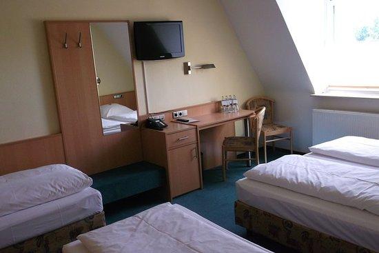 Grunberg, Германия: Guest room