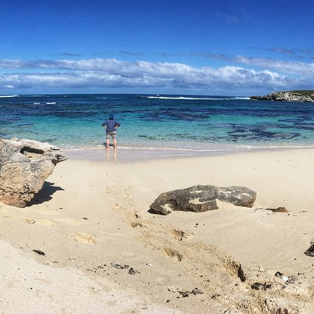 Rottnest Island Pedal And Flipper 2019 All You Need To