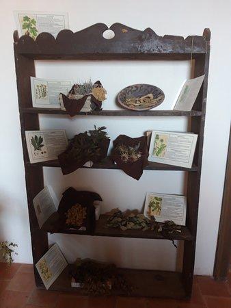 """Mostra Permanente""""Stregoneria, Eresia e santa Inquisizione"""" - at  Palazzo Episcopale"""