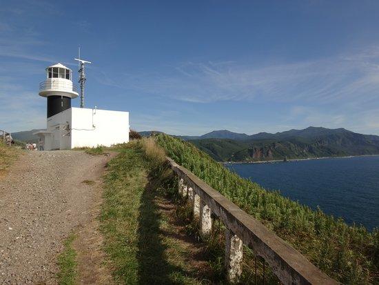Shakotan-cho, Japan: 神威岬の先端部にあります