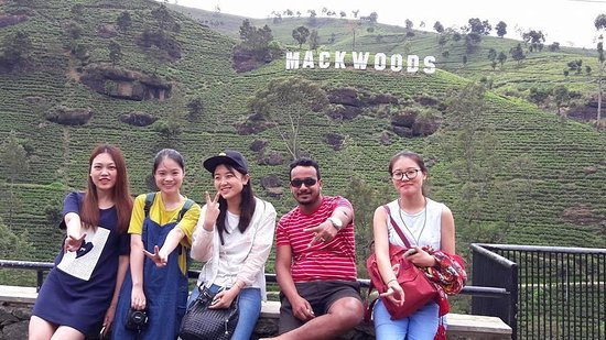 Gampaha, Шри-Ланка: Tour Mackwoods Tea Centre