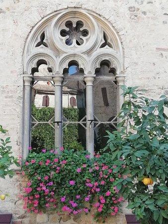 Montechiarugolo, Italy: IMG_20180909_113445_large.jpg