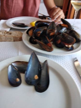Nerga, Испания: Mejillones vapor muy ricos