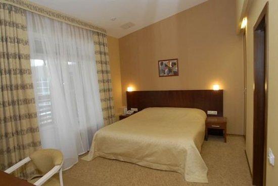 Zhelnino, Rusia: Guest room