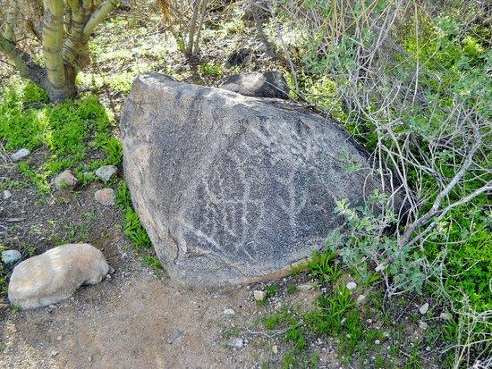 Waddell, AZ: Petroglyph