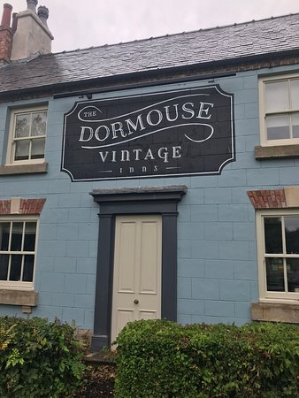 The Dormouse: Outside the pub