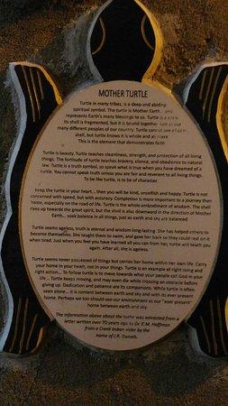 Turtle Sculpture: Turtle Sculpture