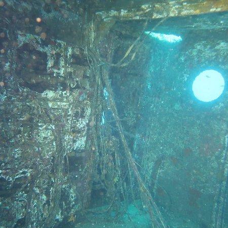 Bubbles Dive Centre: IMG_20180908_195200_578_large.jpg
