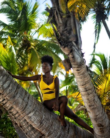 Desroches Island, เซเชลส์: sitting on a tree is the way to go on Seychelles beaches