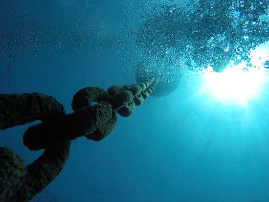 Calypso Diving Centre:   making bubbles