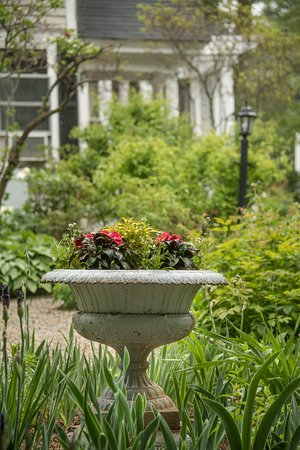 Mira Monte Inn: Side Garden