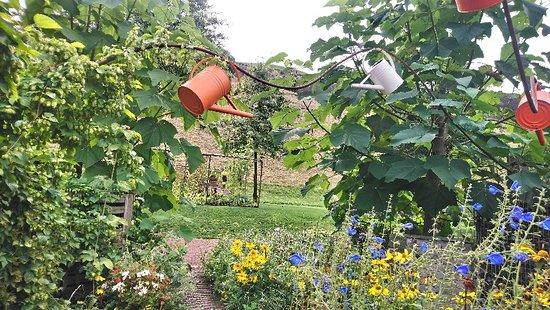 Garden for Peace