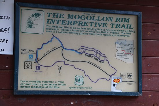 Map At The Trail Head Picture Of Mogollon Rim Interpretive Trail